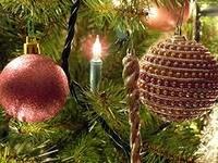 Пусть Новый год в сиянье снежном с добром и радостью придет!